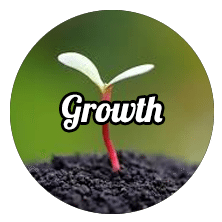 home Home growth